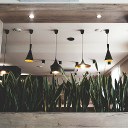 photography stilllife restaurant travel myphotography freetoedit