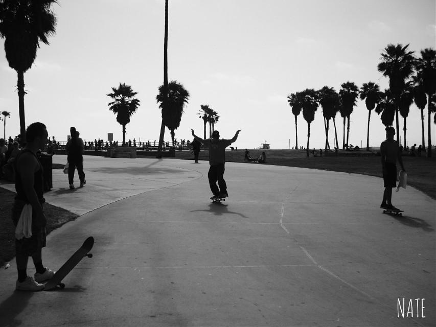 #venicebeach #losangeles #travelphoto #blackandwhite #myphoto #edited *not free to edit*