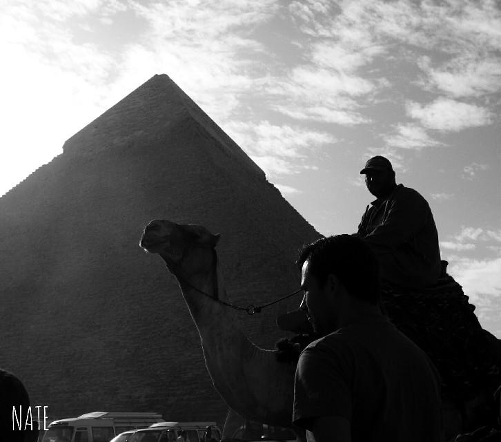 #egypt #giza #pyramids #travelphoto #myphoto #edited #blackandwhite *not free to edit*