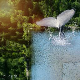 freetoedit foldinglandscape edgeoftheworld myedit whale