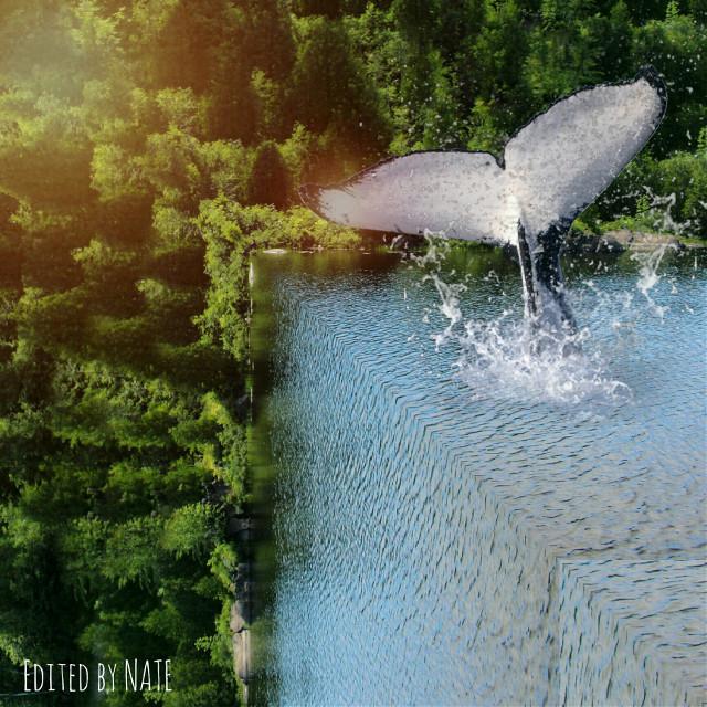 #foldinglandscape #edgeoftheworld #myedit #whale #freetoedit  *not free to edit*