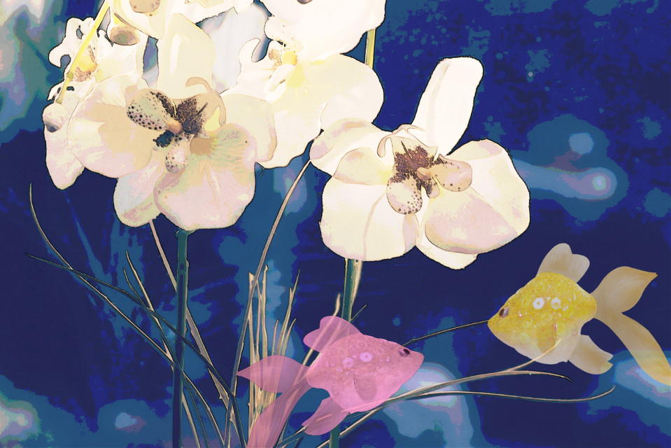 I saw this original and I needed to work with it :) #flowers #watercoloreffect #fish  #freetoedit #flowerpower