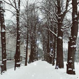 freetoedit pcbeautifulscenery beautifulscenery snow coldweather