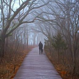 freetoedit foggydays boardwalk silhouttes