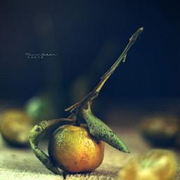 stilllife photography stilllifephotography darkmood fruit