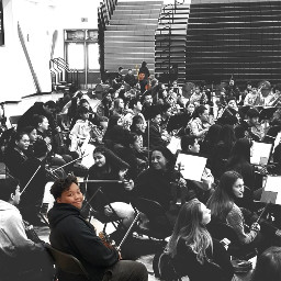 music violin strings proud myboys