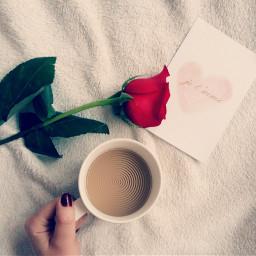 freetoedit coffe rose remix