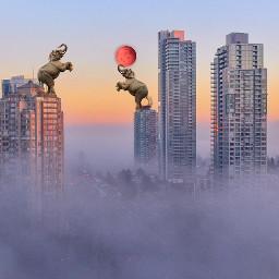 freetoedit city fog sky nature elephant sunset redcolour moon beautiful remixit minimalism