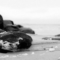 stones sea water beach blackandwhite