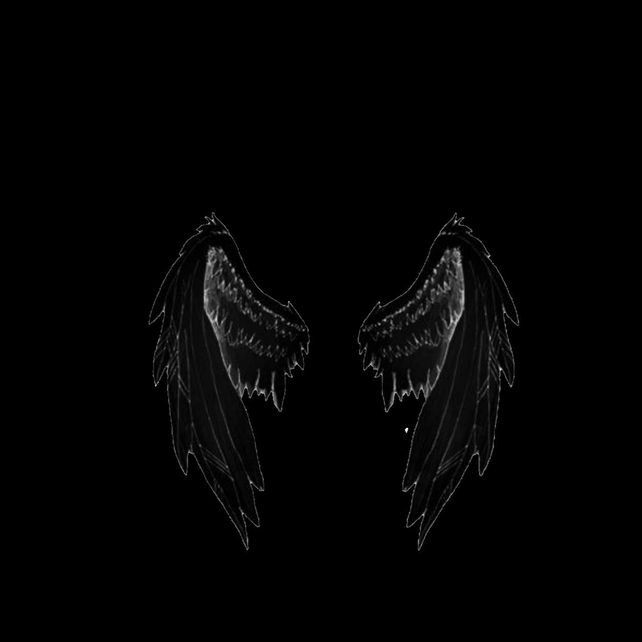 Крылья ангелов гифка