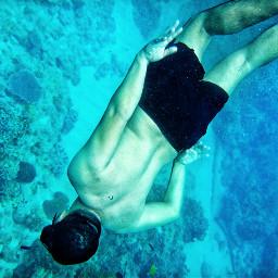 diving beach underwater freetoedit pcwater