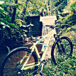 freetoedit oneday exercisetime @aria-paredes pccycling cycling