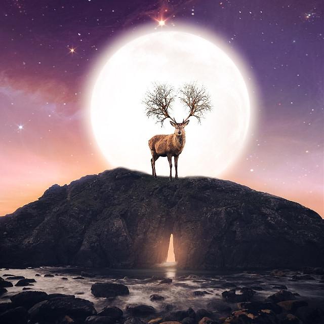 Moon shine  #freetoedit #myedit #moon#fantasy  @picsart