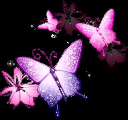 ftestickers vectors butterflies pink purple