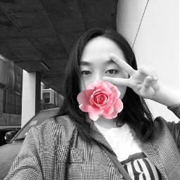 freetoedit flower easterselfie aestheticplants easter2018