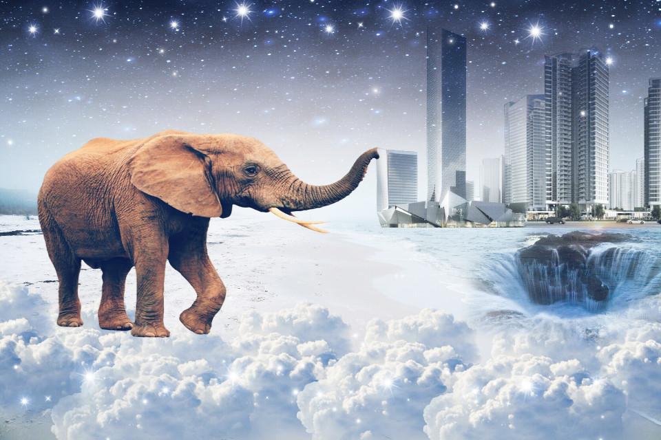 #freetoedit#MyEdit#elephant#city#sea#sky#glitter#hdr