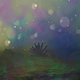 vipshoutout freetoedit remix dustbrush colorbrightmagiceffect