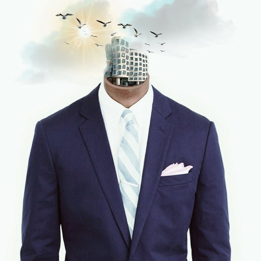 #freetoedit BSNSS company edit #neck #suit #building #surrealism #sun #birds #body #picsart