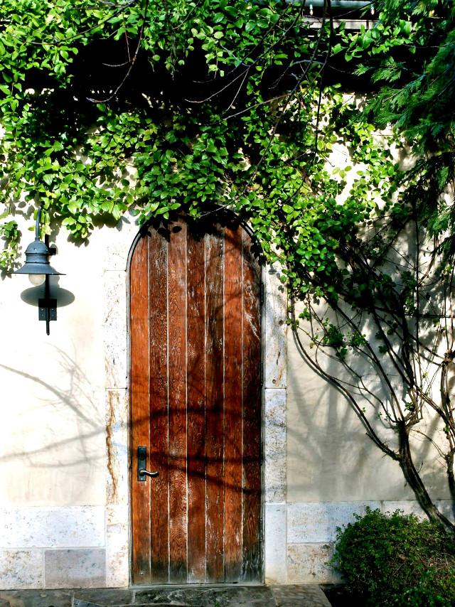 #wood #door