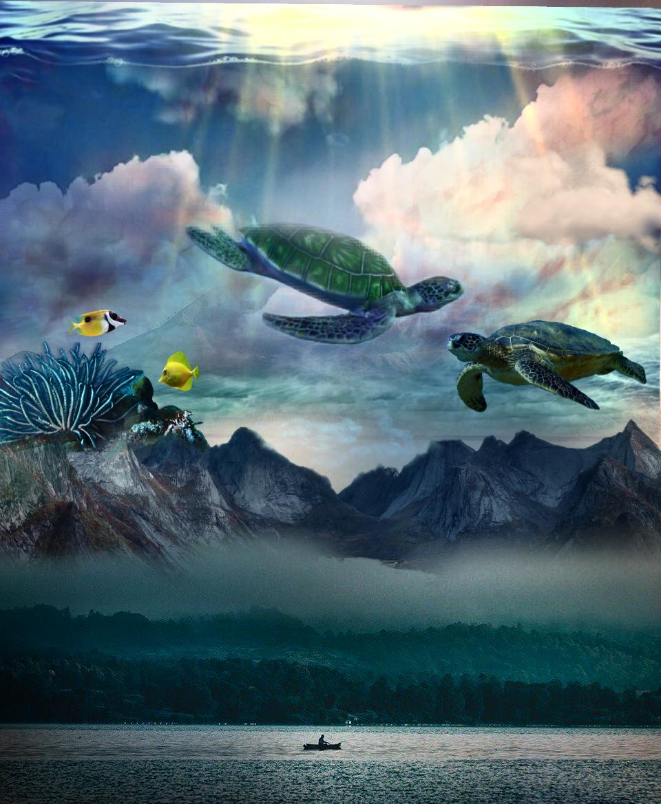 #freetoedit #fog #mountains #ocean #lake #turtles #coralreef