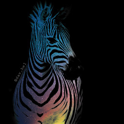 ircintothegalaxy intothegalaxy freetoedit zebra galaxy