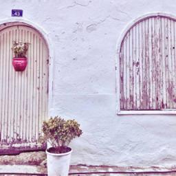 freetoedit. door wall flower hangingflowers freetoedit