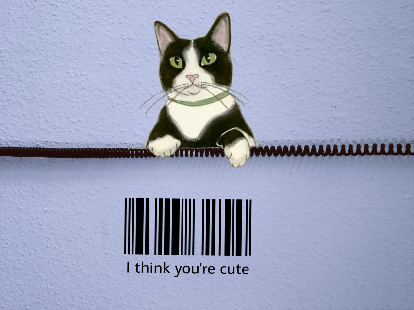 #freetoedit #cat #barcode #remixit