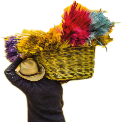 lol freetoedit irccolorfulbasket colorfulbasket