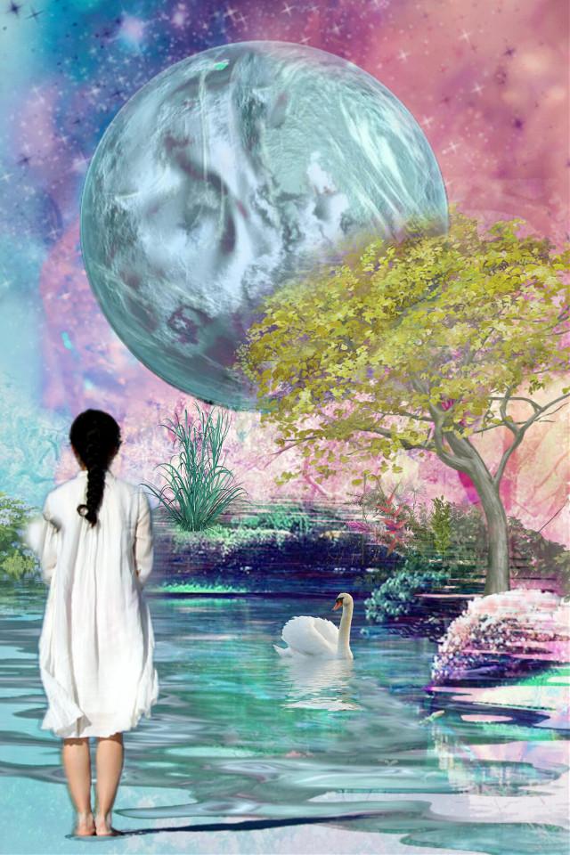 #freetoedit #woman #lake #moon #stars #nature #water #swan