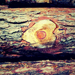 freetoedit wood woodlogs heartshape nature