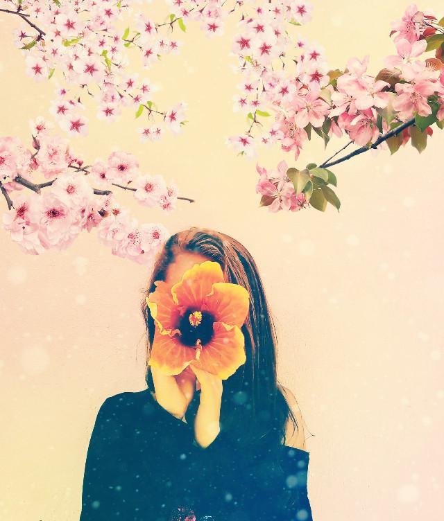 #freetoedit #flowers #colors