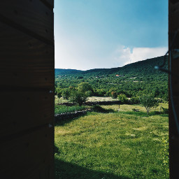 freetoedit green villagelife windowview croatia