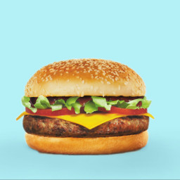 freetoedit irchamburgerbun hamburgerbun