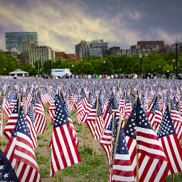 bostoncommon veteransday thehappiesplaceonearth remembering