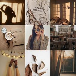 aesthetic brownphotography yeonwoomomoland