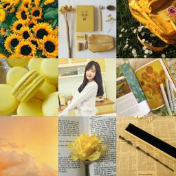 aesthetic yellow yeonwoomomoland collageart