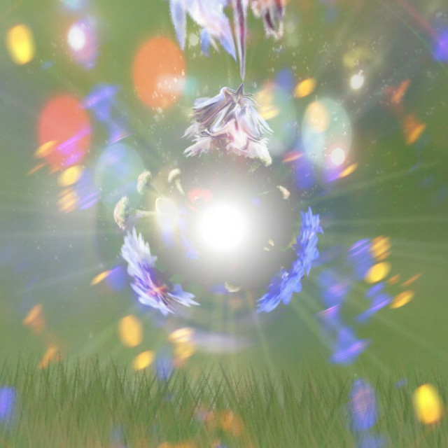 Disco ball of interest #discoball  #freetoedit #discoclub #flowers