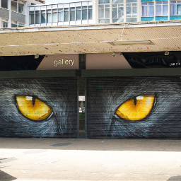 streetart wallart graffitiwallslondon graffiti london