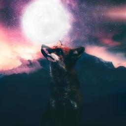picsart moon nighttime freetoedit