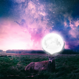 picsart fantasyworld galaxy moonlight