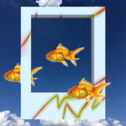 freetoedit surreal fish sky shadowplay