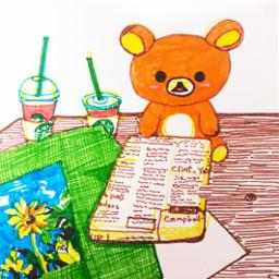 drawing illustration art bear colorful