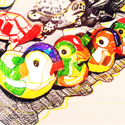 birds illustration drawing colorful dongdaemun