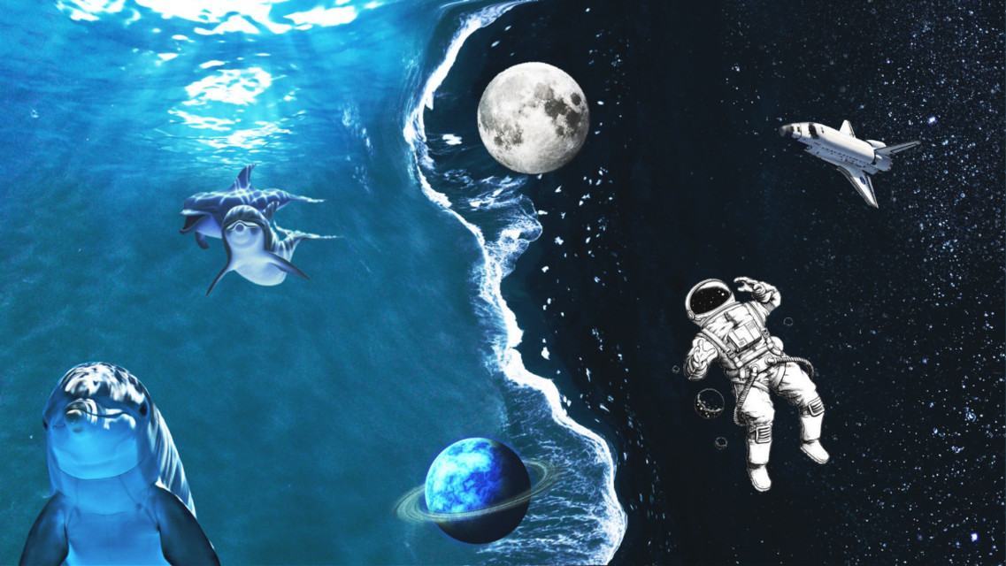 #freetoedit #space #stars #yinyang #sky #water #dolphin #sea #underwater #underthesea #spaceman #moon #saturn #dramaeffect