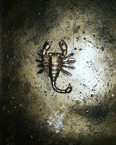 Сонник: к чему снится во сне черный скорпион.