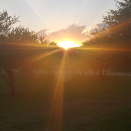 sunsetsky sunset sunlight travelcollage summersunset