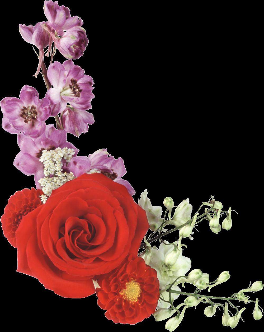 Цветы для фона картинки пмг, надпись