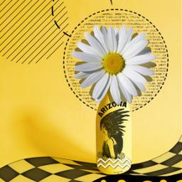 freetoedit yellow black design composition