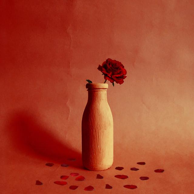 #freetoedit #rose #vase #red