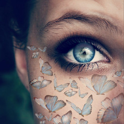 freetoedit remixit butterfly eye beautifulgirl blue